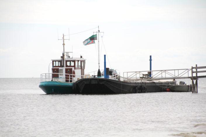 Offshoulder Bluse